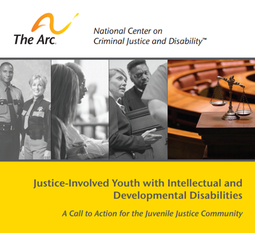 how to get youth involved in the justice system